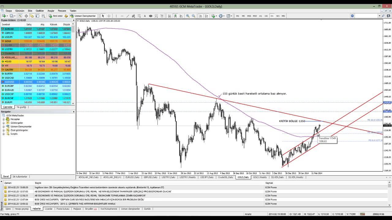 Forex piyasa beklentileri